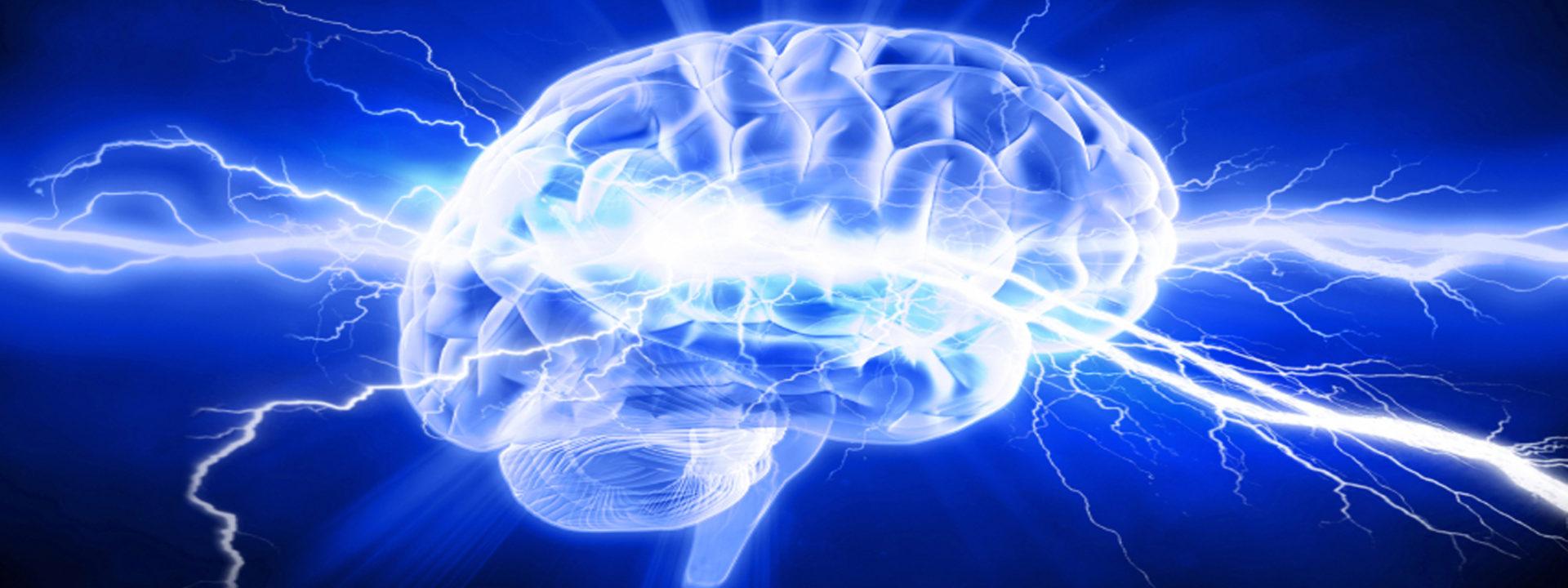 Brain Spark Design